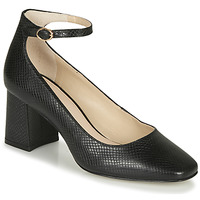 Shoes Women Heels André JASMINE Black / Motif