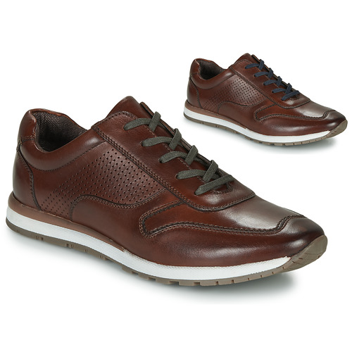 Shoes Men Low top trainers André SPORTCHIC Brown