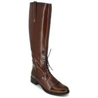 Shoes Women High boots Luis Gonzalo 4932M Botas de Montar de Mujer brown