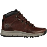 Shoes Men Derby Shoes & Brogues Timberland World Hiker Mid Brown