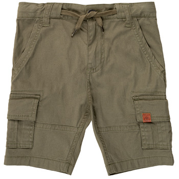 Clothing Boy Shorts / Bermudas Timberland JOSHUA Green