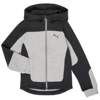 Clothing Boy sweaters Puma EVOST HOOD JKT Grey