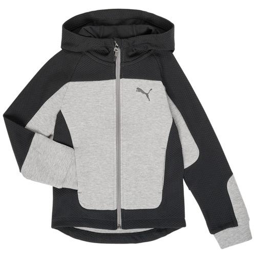 Clothing Boy sweaters Puma EVOST HOOD JKT Grey