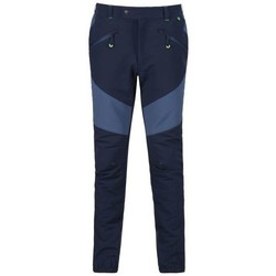 Clothing Men Trousers Regatta Mountain Isoflex Walking Trousers Blue Blue
