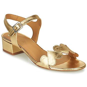 Shoes Women Sandals Emma Go POPPY Gold