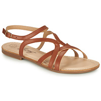 Shoes Women Sandals Betty London MASSANE Cognac