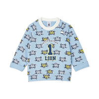 Clothing Boy Sweaters Petit Bateau FORMIDABLE Multicolour