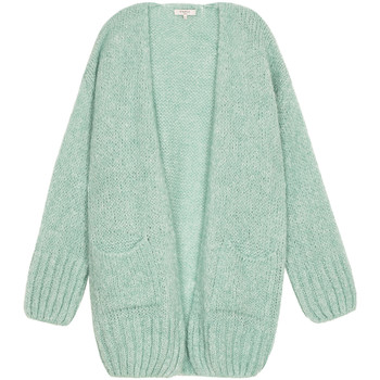 Clothing Women Jackets / Cardigans Frnch LAULA mid-length knit vest Celadon green