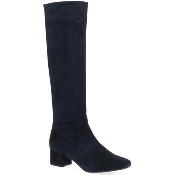 Shoes Women High boots Peter Kaiser Tomke Womens Suede Knee High Boots blue