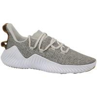 Shoes Men Fitness / Training adidas Originals Alphabounce Trainer White,Beige