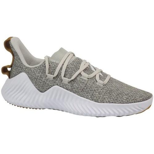 Shoes Men Low top trainers adidas Originals Alphabounce Trainer