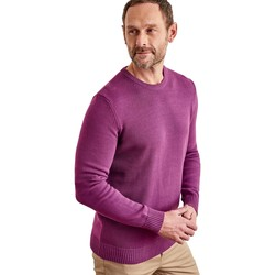 Clothing Men Jumpers Woolovers 100% Cotton Crew Neck Jumper Purple