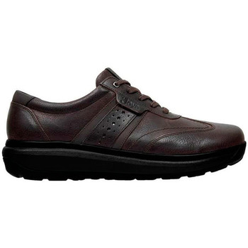 Shoes Men Low top trainers Joya DAVID M BROWN