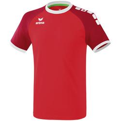 Clothing Men Short-sleeved t-shirts Erima Maillot  Zenari 3.0 rouge/blanc