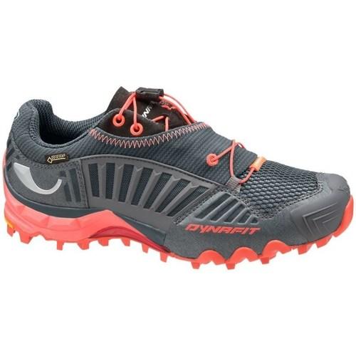 Shoes Women Low top trainers Dynafit WS Feline Gtx Grey