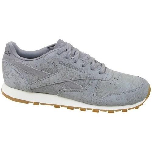 Shoes Women Low top trainers Reebok Sport CL Lthr Clean Exotics Grey