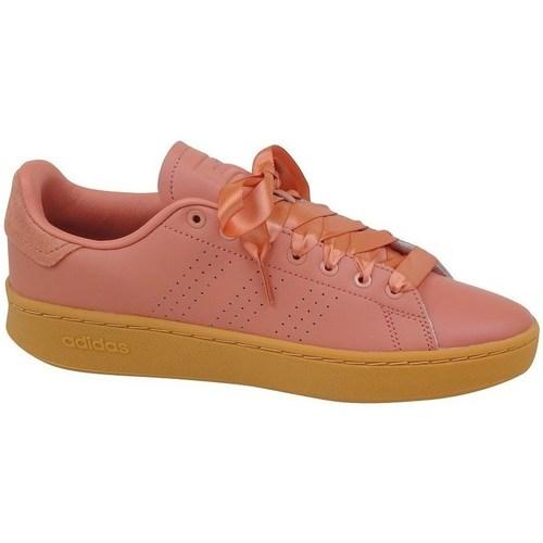 Shoes Women Low top trainers adidas Originals Advantage Bold