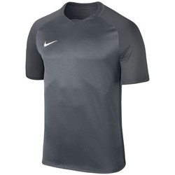 Clothing Boy Short-sleeved t-shirts Nike JR Dry Trophy Iii Jersey Graphite