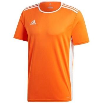 Clothing Men short-sleeved t-shirts adidas Originals Entrada 18 Orange