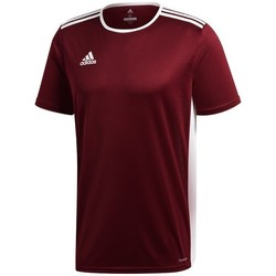 Clothing Men Short-sleeved t-shirts adidas Originals Entrada 18 Burgundy