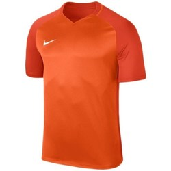 Clothing Men Short-sleeved t-shirts Nike Dry Trophy Iii Jersey Red