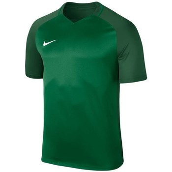 Clothing Men short-sleeved t-shirts Nike Dry Trophy Iii Jersey Green