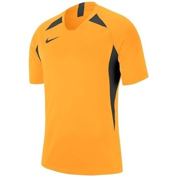 Clothing Men Short-sleeved t-shirts Nike Legend SS Jersey Black, Orange