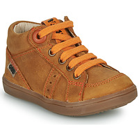 Shoes Boy Hi top trainers GBB ANGELITO Cognac