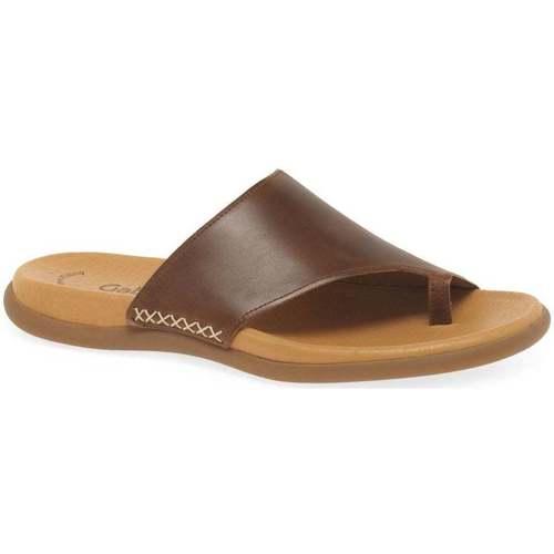 Shoes Women Flip flops Gabor Lanzarote Toe Loop Womens Mules brown