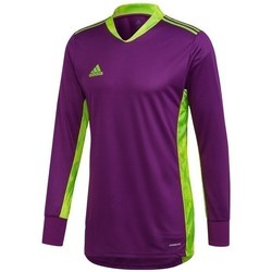 Clothing Men sweaters adidas Originals Adipro 20 Violet