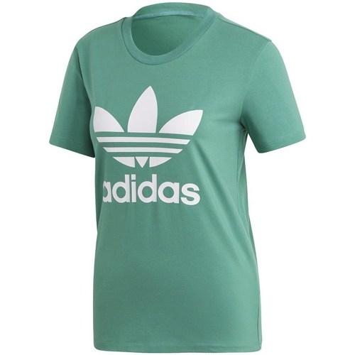 Clothing Women short-sleeved t-shirts adidas Originals Trefoil Tee Green
