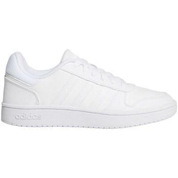 Shoes Men Low top trainers adidas Originals Hoops 20 K White