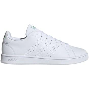 Shoes Men Low top trainers adidas Originals Advantage Base White