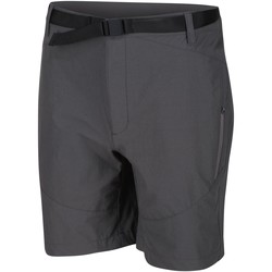 Clothing Men Shorts / Bermudas Regatta Highton Mid Length Walking Shorts Grey Grey