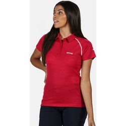Clothing Women T-shirts & Polo shirts Regatta Kalter Short Sleeve Polo Shirt Pink Pink