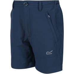 Clothing Children Shorts / Bermudas Regatta JUNIOR HIGHTON Stretch Shorts Seal Grey Blue Blue