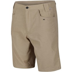 Clothing Men Shorts / Bermudas Regatta Delgado Lightweight Coolweave Shorts Brown Brown
