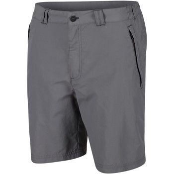 Clothing Men Shorts / Bermudas Regatta Leesville II Multi Pocket Walking Shorts Grey Grey