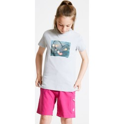 Clothing Children T-shirts & Polo shirts Dare 2b GO BEYOND Graphic T-Shirt Grey