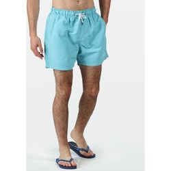 Clothing Men Trunks / Swim shorts Regatta MAWSON II Swim Shorts Blue