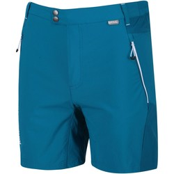 Clothing Men Shorts / Bermudas Regatta Mountain Walking Shorts Blue Blue