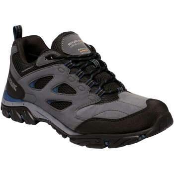 Shoes Men Multisport shoes Regatta HOLCOMBE IEP Low Walking Boots Navy Granite Grey Grey
