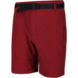 Clothing Men Shorts / Bermudas Regatta HIGHTON Mid Shorts Red
