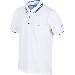 Clothing Men Short-sleeved polo shirts Regatta TALCOTT II TShirt White