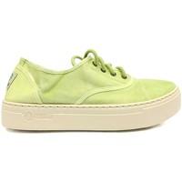 Shoes Women Trainers Natural World Basket Platform Verte 641-6112E Green
