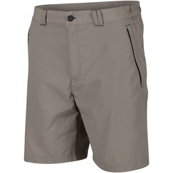 Clothing Men Shorts / Bermudas Regatta Leesville II Walking Shorts Grey Grey