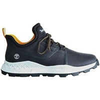 Shoes Men Multisport shoes Timberland Cupsole Modern OX Black
