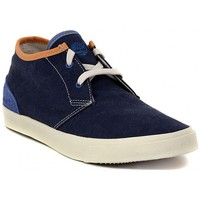 Shoes Men Hi top trainers Timberland CHUKKA BLUE     78,8