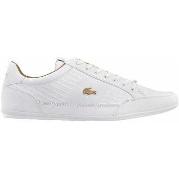 Shoes Men Low top trainers Lacoste Chaymon White