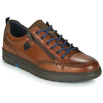 Shoes Men Low top trainers Fluchos ATLASS Brown